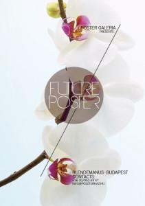 művészfotók - orchidea 2